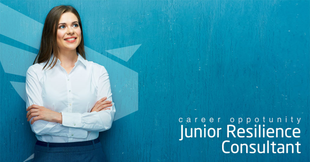 new zealand jobs consultant junior business continuity resilience