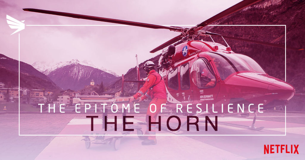 resilience the horn risklogic business continuity emergency management