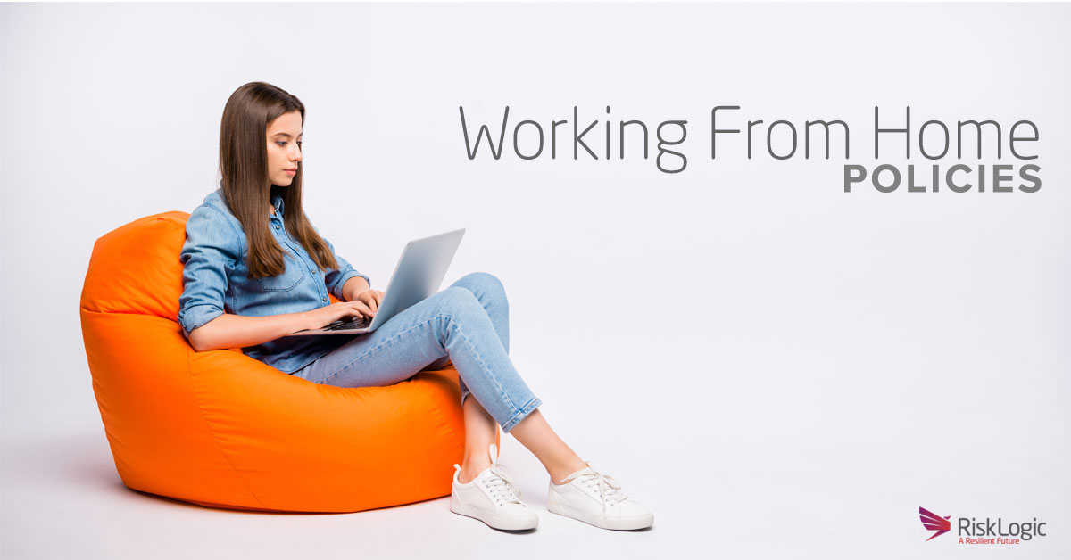 Working from home policies new zealand